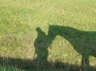 Im Tempo der Natur: Mensch und Pferd im Einklang.