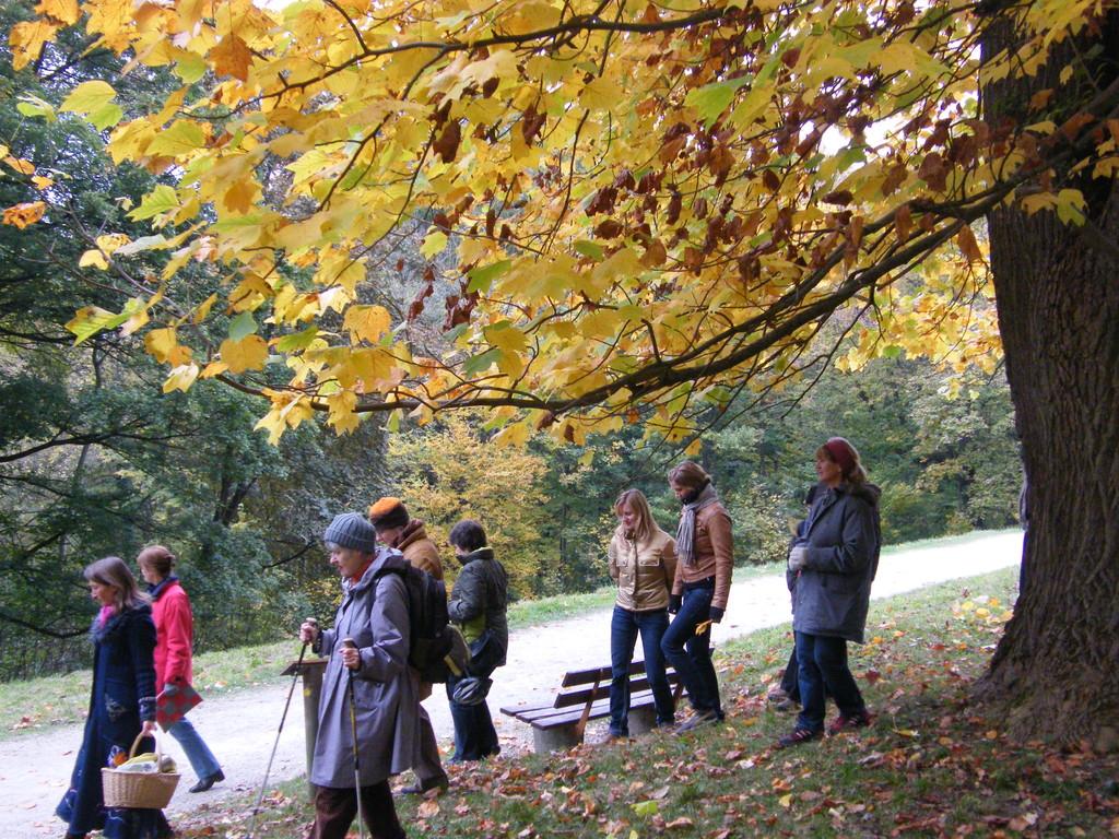 Herbstnachmittag im Hofgarten