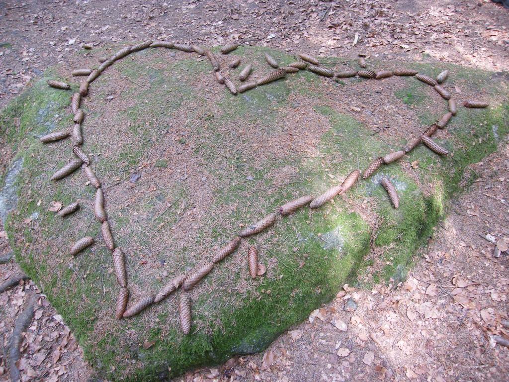 Ein Herz für die Erde