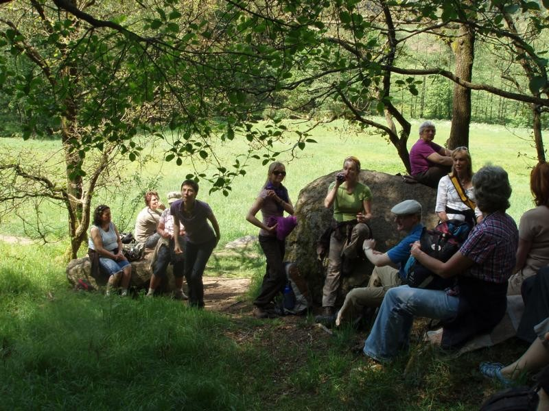 Naturführung im Höllbachtal