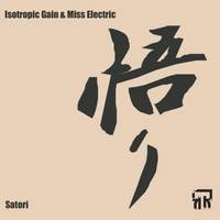 Isotropic Gain & Miss Electric - Satori