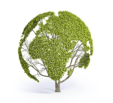 Baum Globus