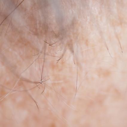 Identity, C-print auf Dibond, 60 x 60 cm, 2012