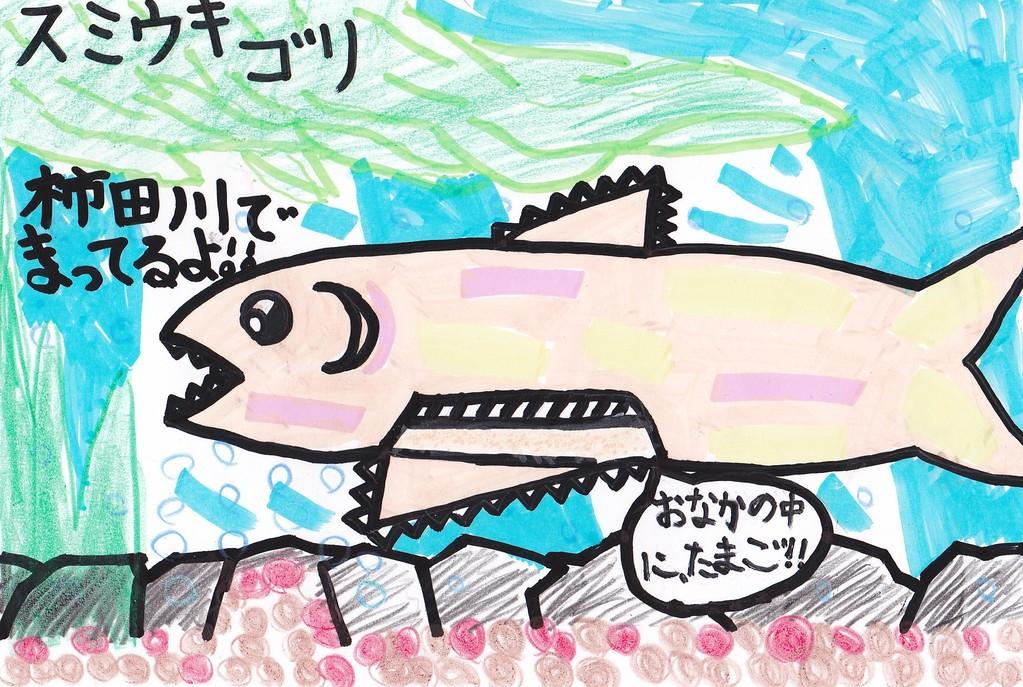 静岡県 柿田川
