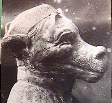 (16) Михрютка (1918г.)