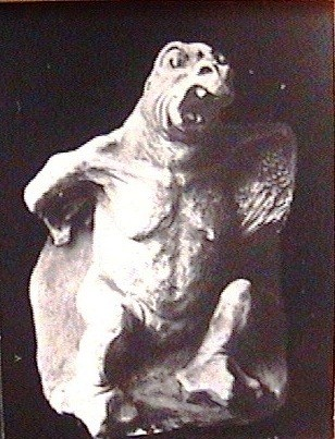 (16) Гадина пугливая (1909г.)