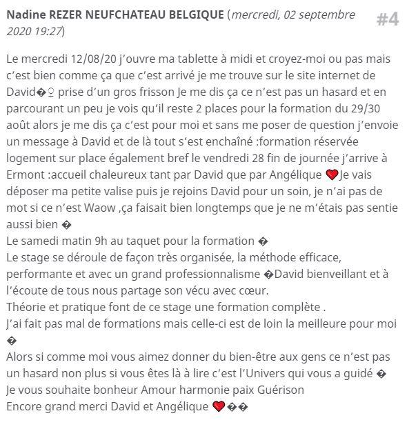 Avis Stage Formation énergéticien Magnétiseur Guérisseur praticien Reiki Bessan Agde Béziers Montpellier