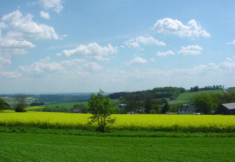 Der Bauernhof eingebettet in die Natur