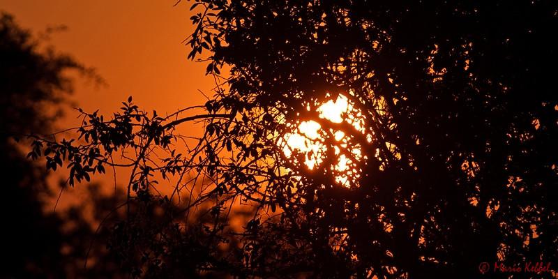 Sonnenuntergang am Okavango Delta