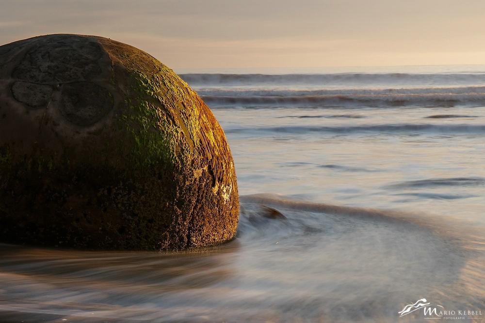 South Island: Am Moeraki Boulders Beach