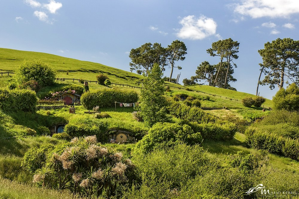 North Island: In Hobbiton
