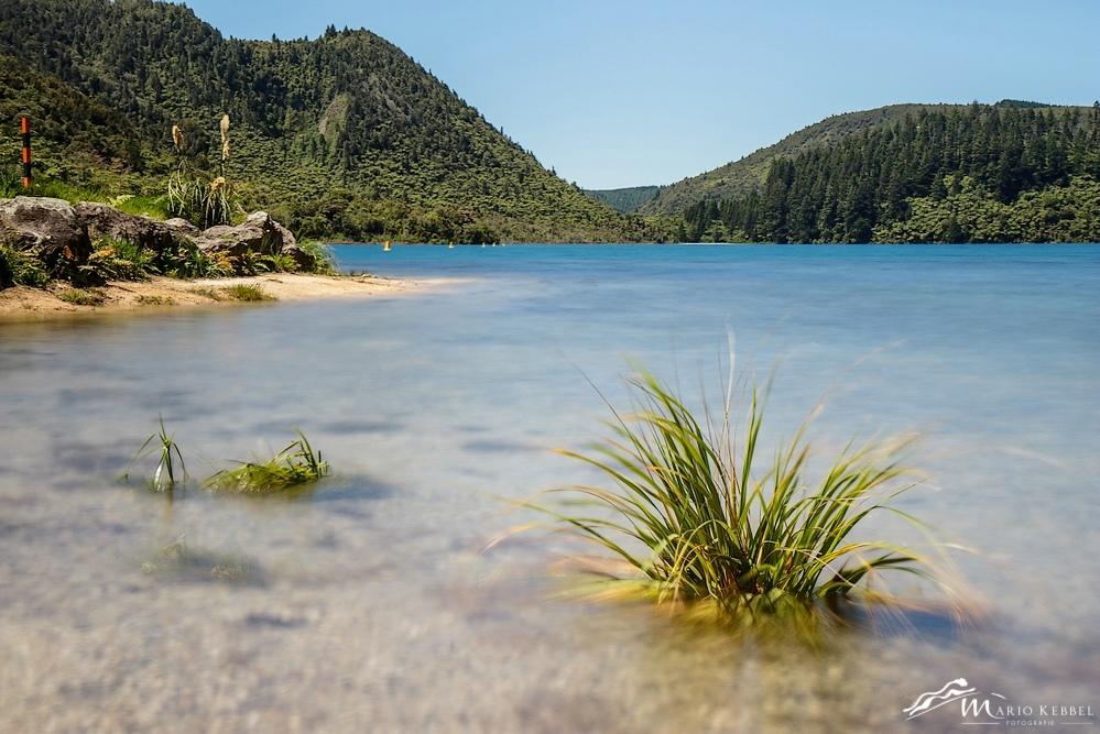 North Island: Blue Lake bei Rotorua