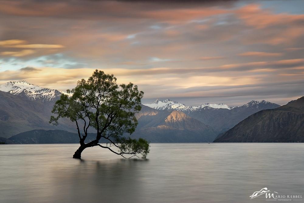 South Island: Sonnenaufgang am Lake Wanaka