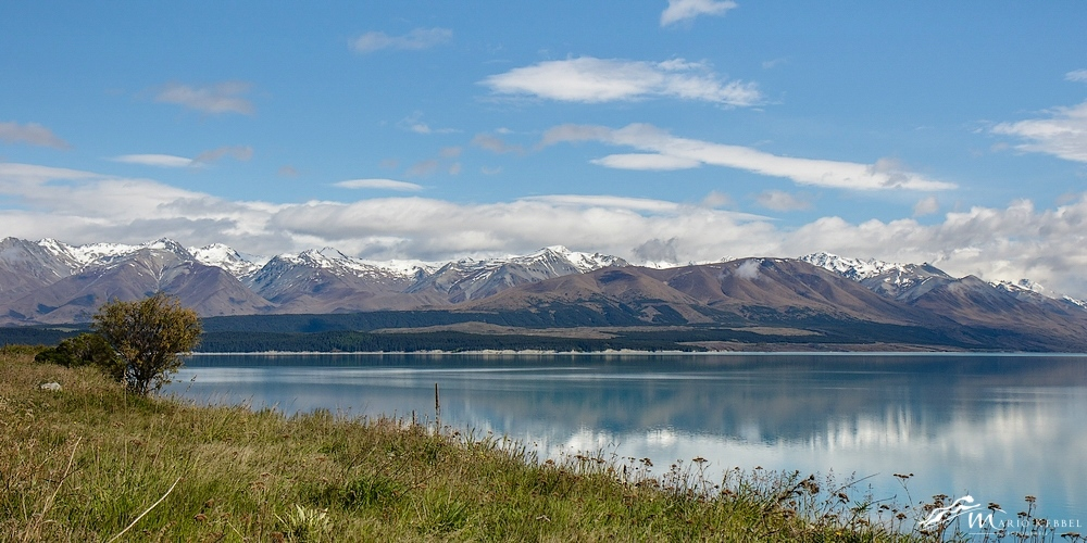 South Island: Enlang des Lake Pukaki