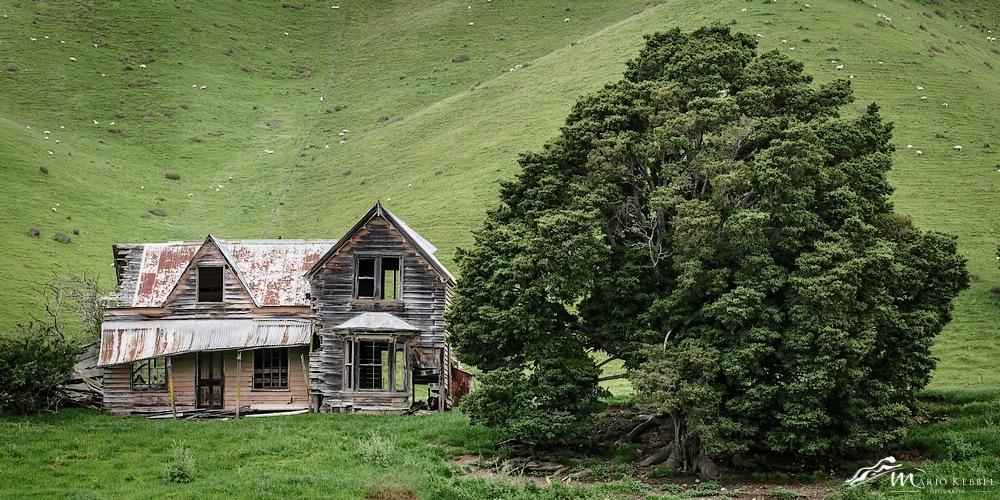 South Island: Verlassen