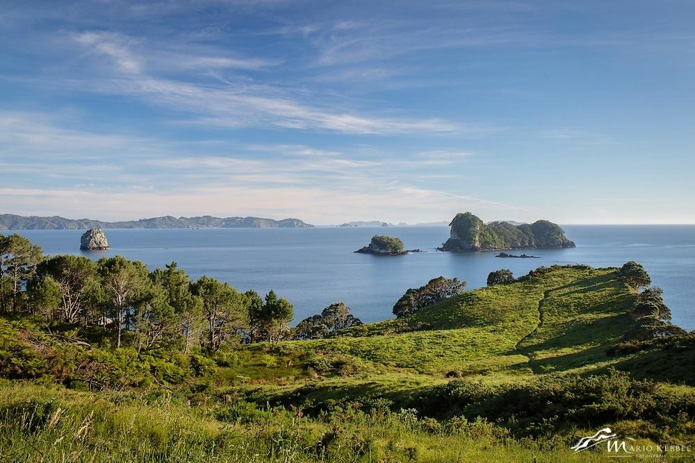 North Island: Unterwegs im Te Whanganui-A-Hei Marine Reserve