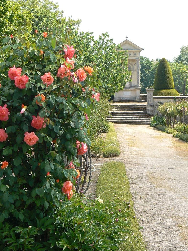 Rosiers des jardins de l'abbaye de Bourgueil 22 rue du poids Bourgueil