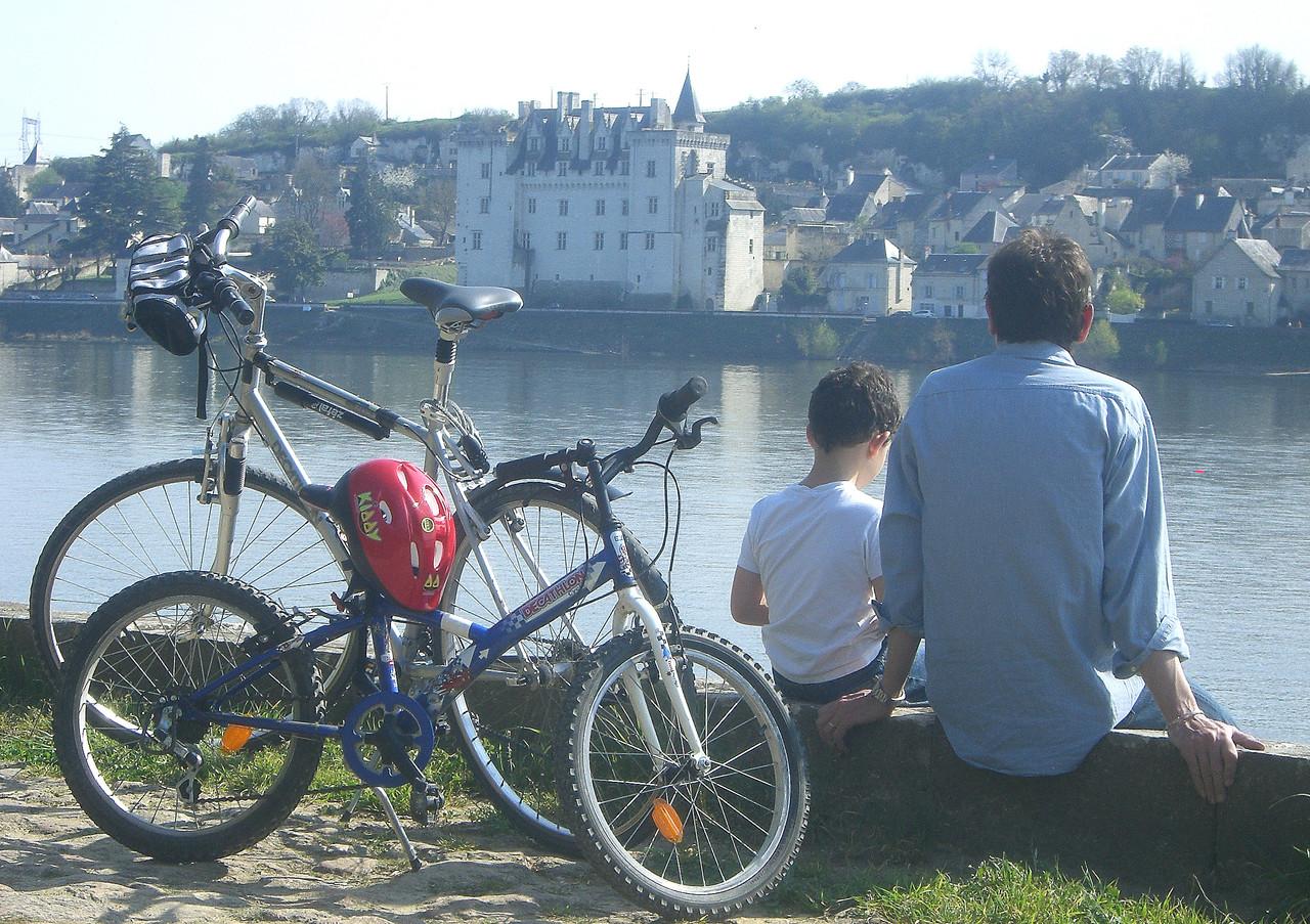 Sur les quais de Loire  vue sur le château de Montsoreau 22 rue du poids Bourgueil