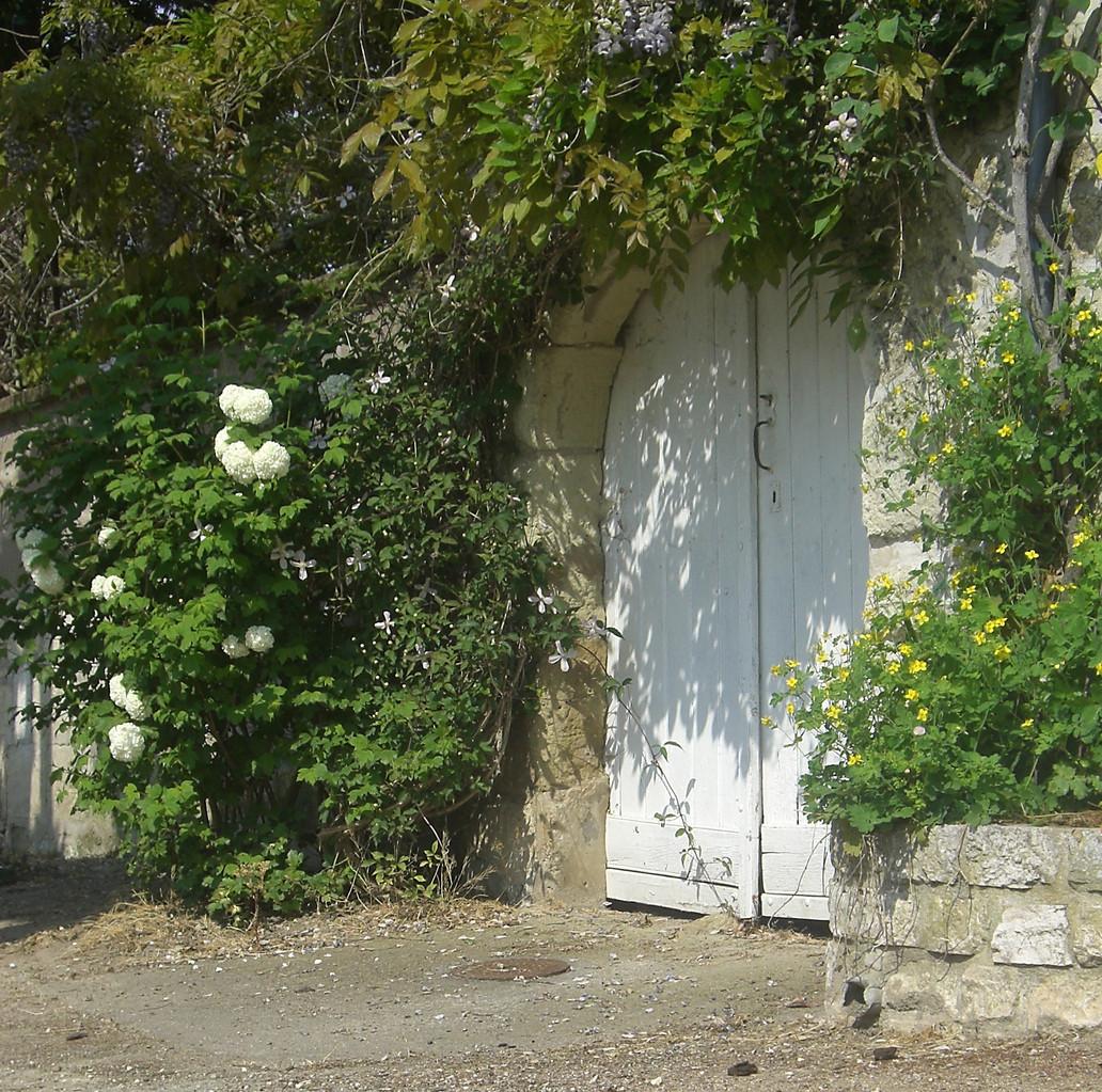 Rosiers de Touraine bords de Loire 22 rue du poids Bourgueil