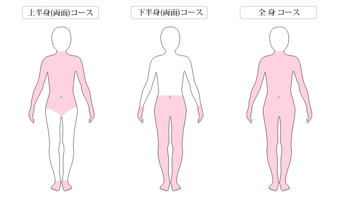 レモングラス 施術コース