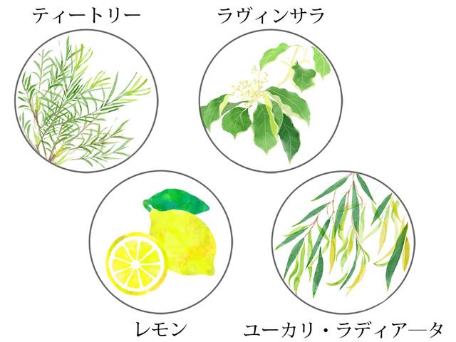 レモングラスオリジナル精油、メン英気力アップ
