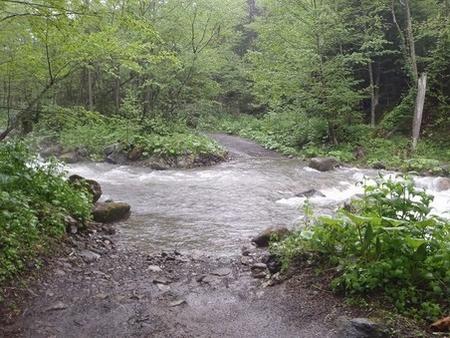 増水時の音更川 2011年6月