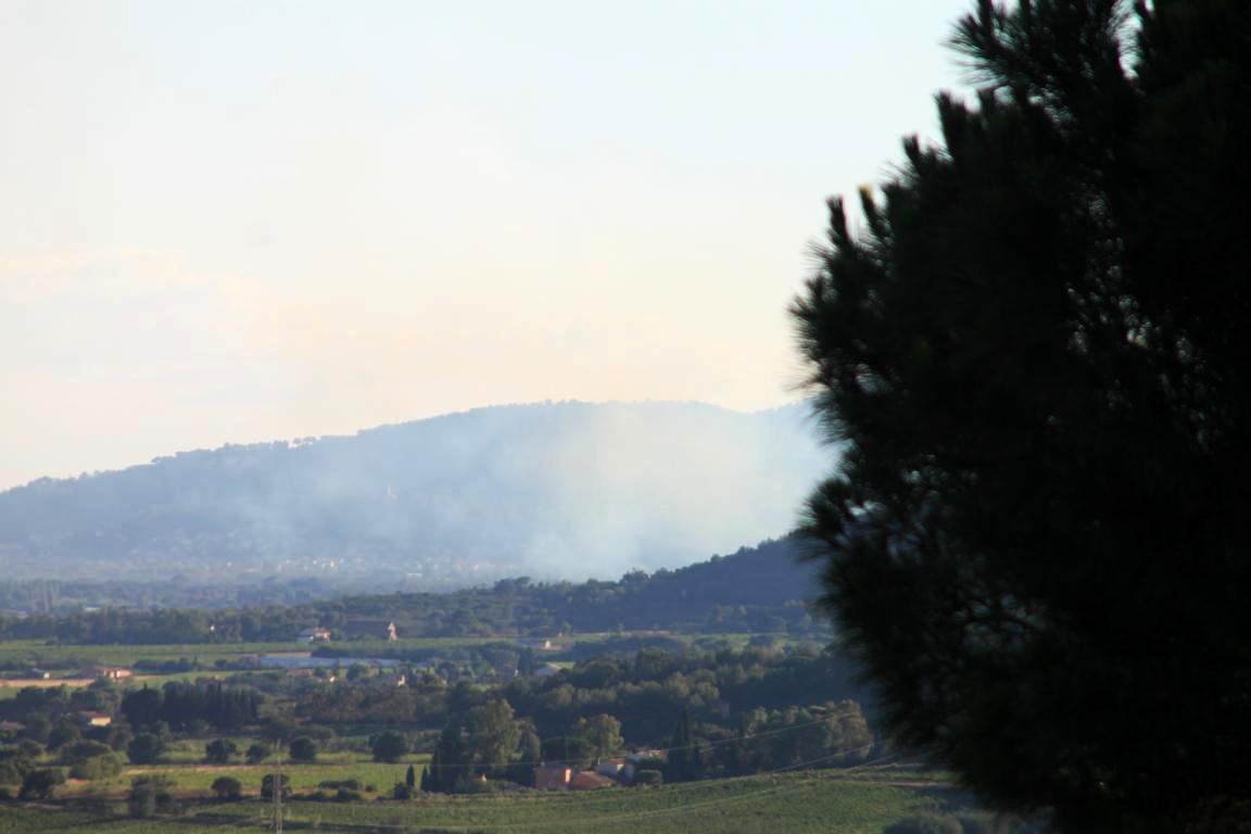 Waldbrand! Eine ständige Gefahr bei Mistral