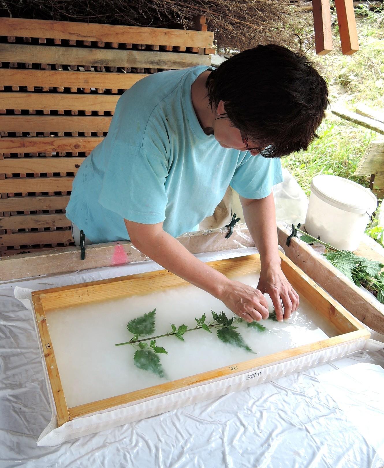 Die Pflanze werden in den Zellstoff eingearbeitet.
