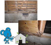 床下を点検したら土台や柱が腐っていたら…