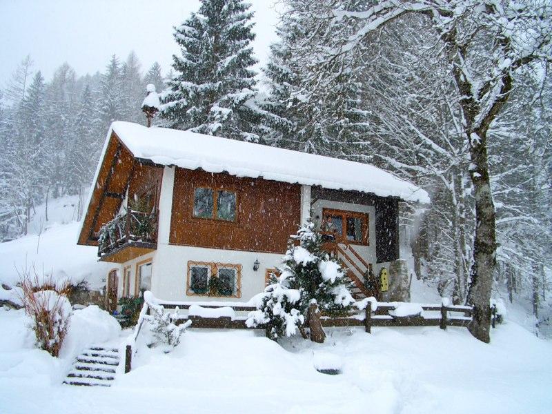 Winteransicht bei Schneefall