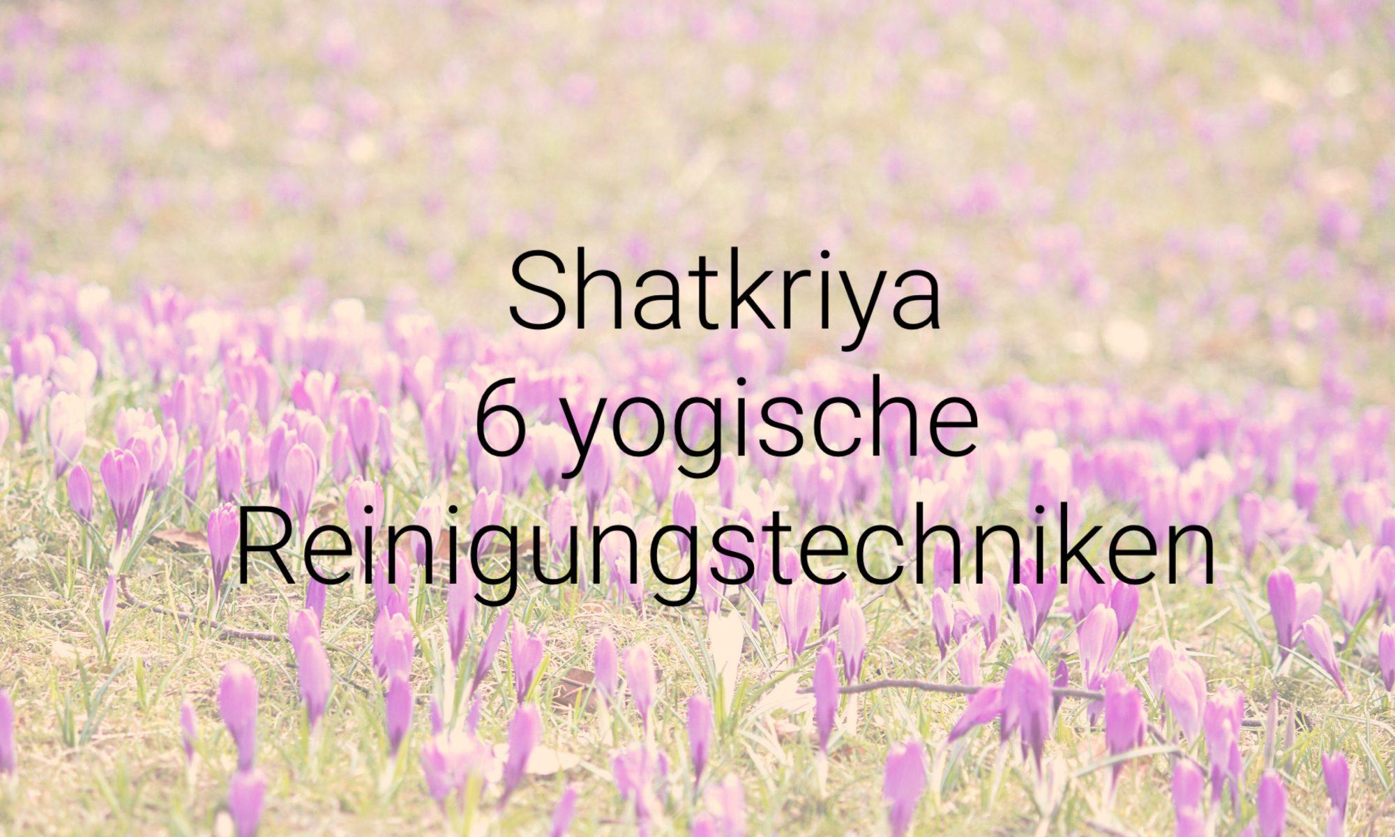 Shatkriya - 6 yogische Reinigungstechniken