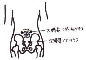 waist.jpg (11983 バイト)