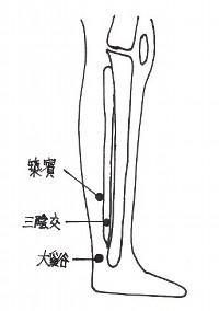 swelling_of_the_leg2.jpg (10863 バイト)