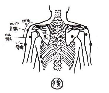 subacromial_bursitis_b.JPG (32139 バイト)