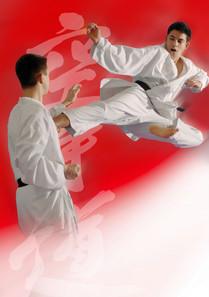 Karate für Jugendliche ab 13 Jahren in der TOWASAN Karate Schule Markt Schwaben