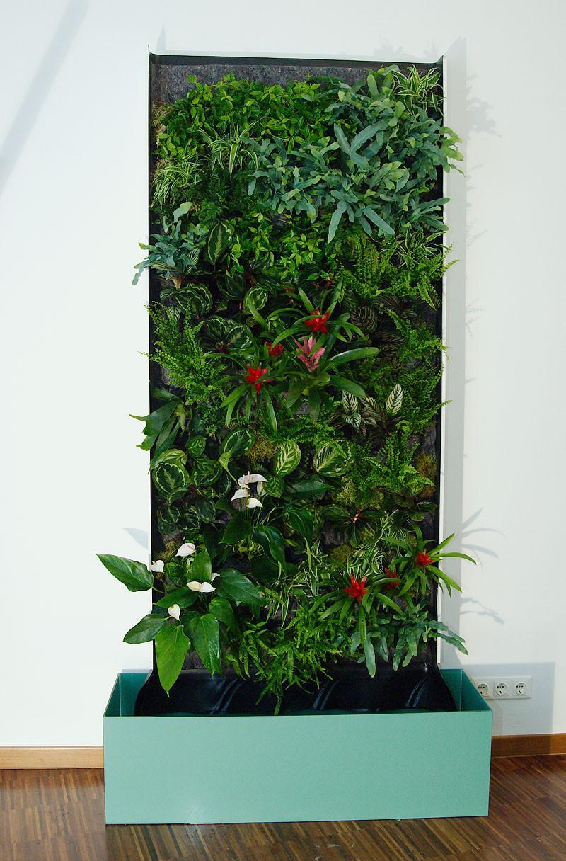 green wall die gr ne wand do it yourself flowercompany. Black Bedroom Furniture Sets. Home Design Ideas