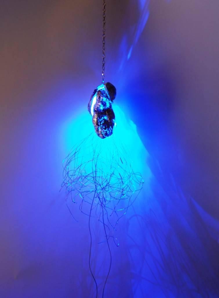 Light of the deep sea, la lanterna degli abissi di Donatella Onofri. SELEZIONATO A MATERIE 2012