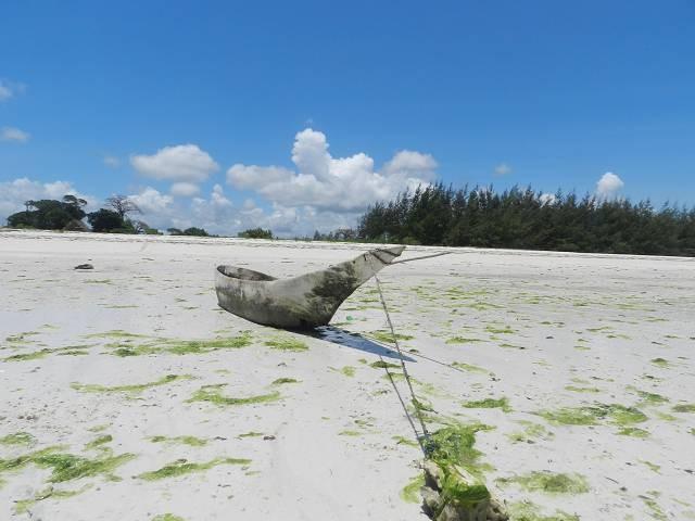 Diani Beach Kenia, der schönste Strand in Afrika