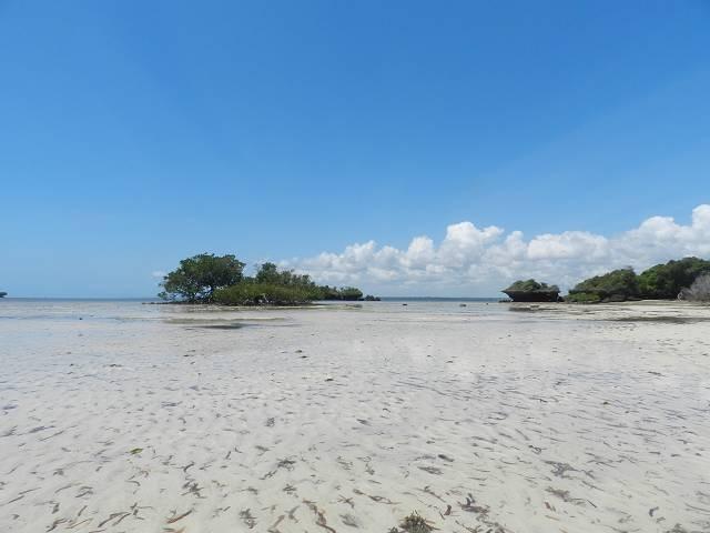 Diani Beach Kenia, nur 500m entfernt
