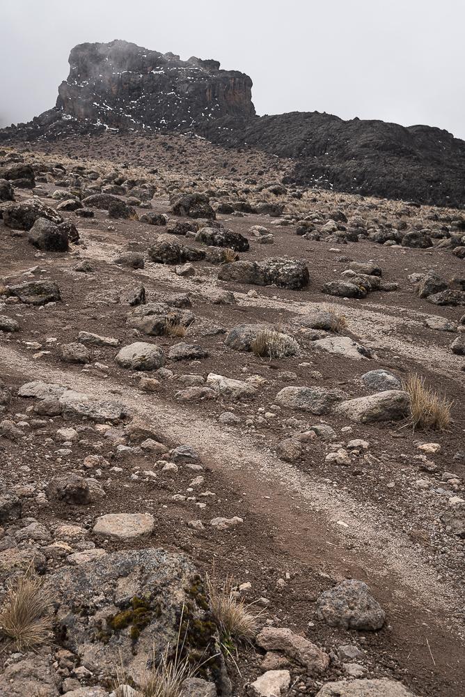 Lava Tower, Kilimanjaro, Kilimandscharo