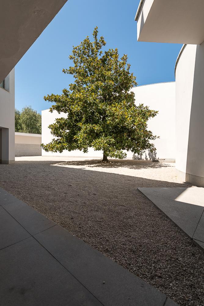 Museu de Arte Contemporânea de Serralves, Porto