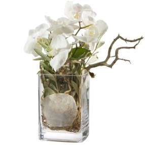Orchideen-Design inkl. Vase             ab CHF 75.00