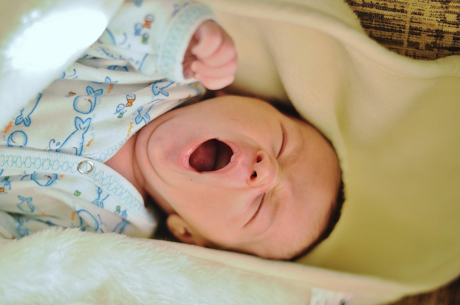 Il bambino con le difese immunitarie non ancora sviluppate acquisisce i batteri che possono trovare nella sua bocca un habitat idoneo