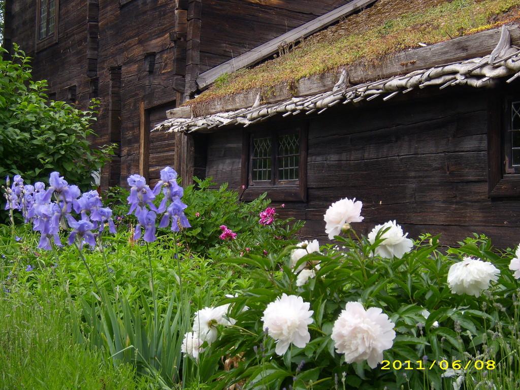 Blumengärtchen in Skansen; LandFrauen Bordesholm