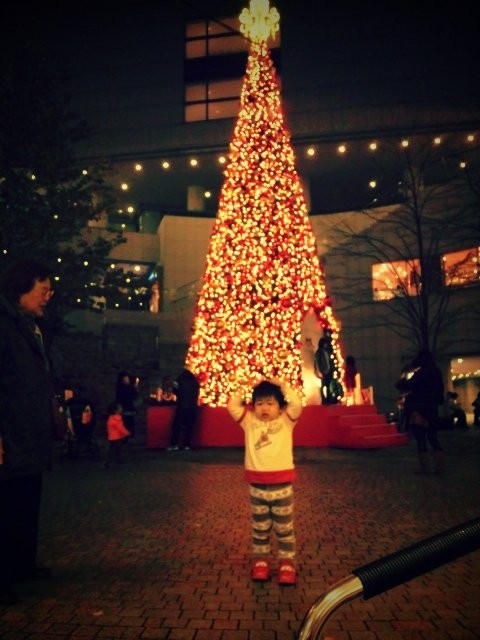 東京オペラシティーのクリスマスツリー