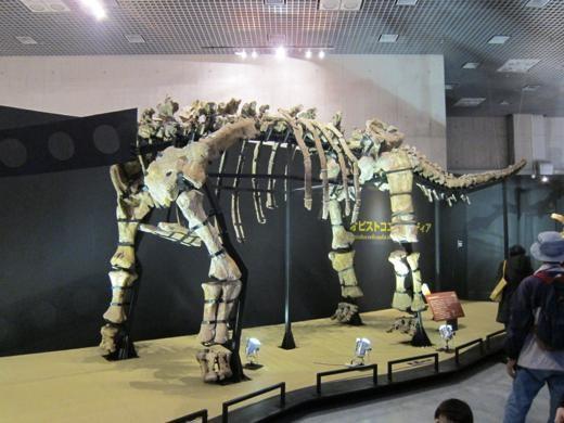 オピストコエリカウディアという恐竜の骨