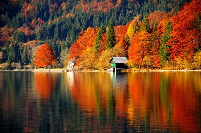 Bohini lake - Lago di Bohini - Bohinj-See