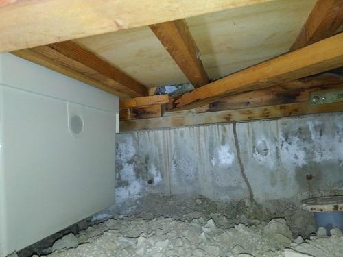 シロアリは床下から蟻道と言うトンネルを作って上がってきます。