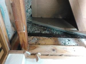 尼崎市 給水管 水漏れ修理