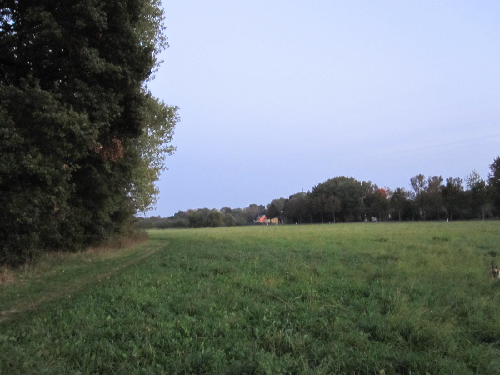 Unser schönes großes Feld